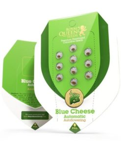 Semilla de Marihuana Blue Cheese Auto - Royal Queen Seeds