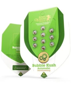 Semilla de Marihuana Bubble Kush Auto - Royal Queen Seeds