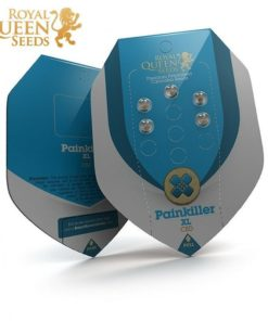Semilla de Marihuana Painkiller XL - Royal Queen Seeds