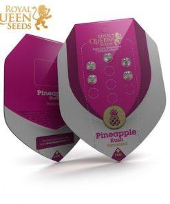 Semilla de Marihuana Pineapple Kush - Royal Queen Seeds