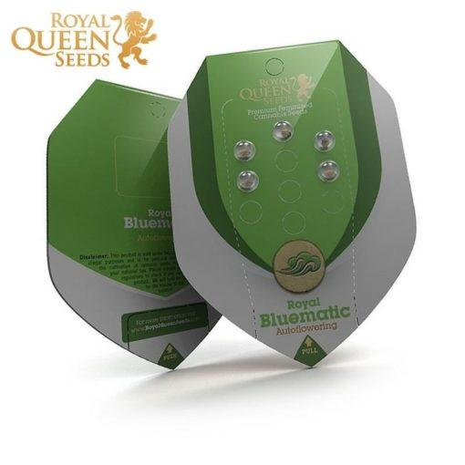 Semilla de Marihuana Royal Bluematic - Royal Queen Seeds Auto